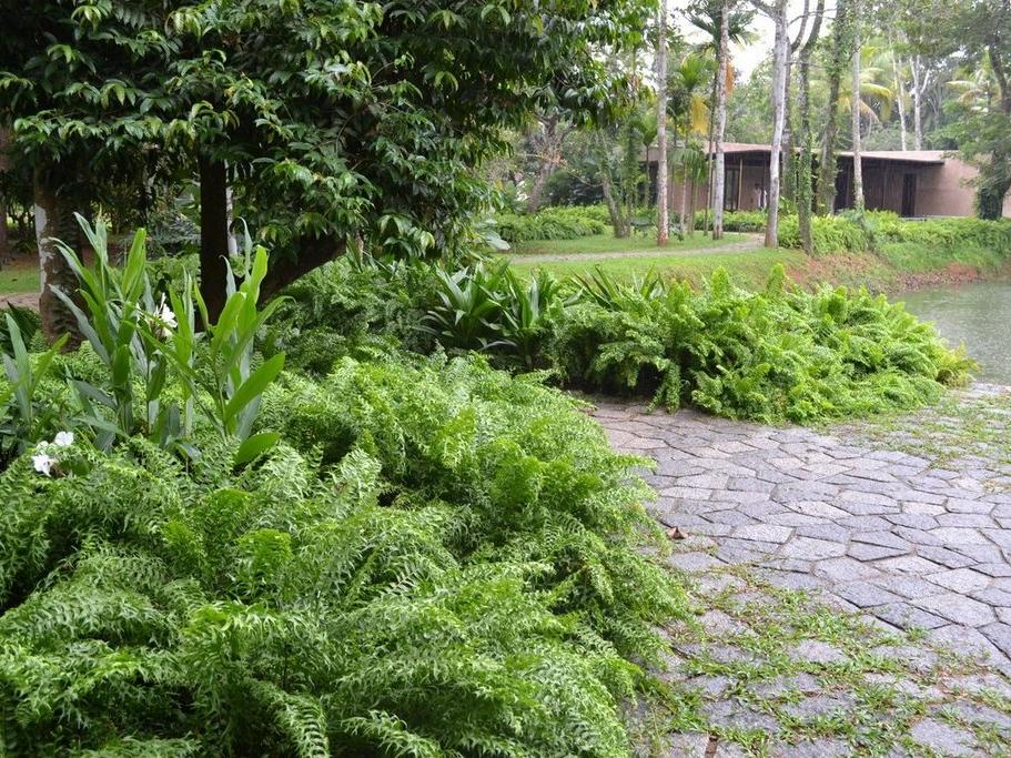 Keralan garden