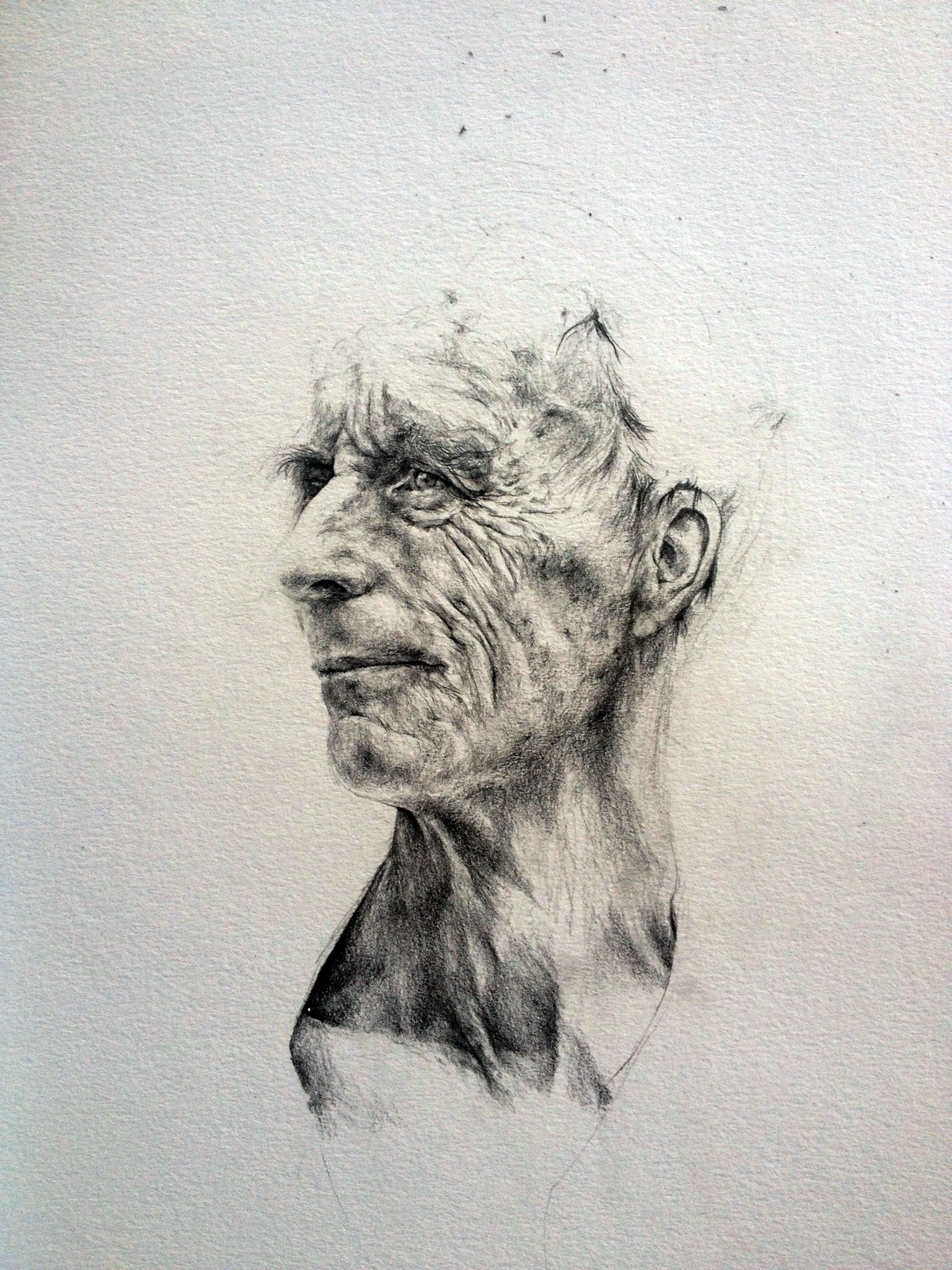 Dad's Head, Looking Back  Pencil on paper  30cm x 40cm  2014