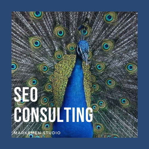 Squarespace SEO Consulting.jpg