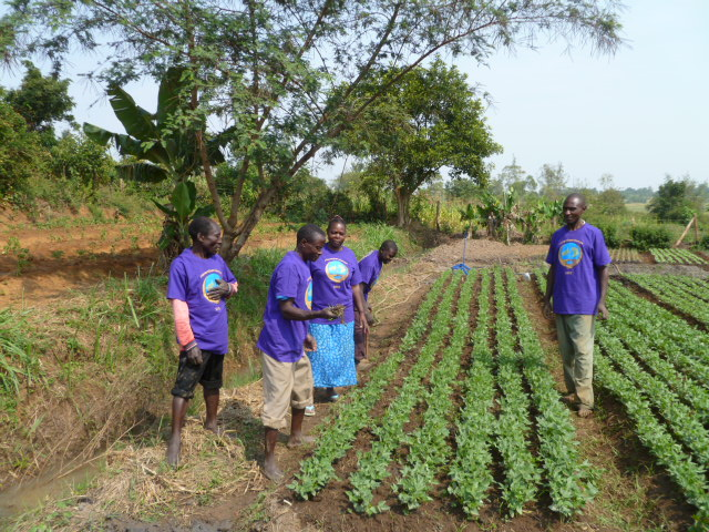 Cooperative Irrigation Plot