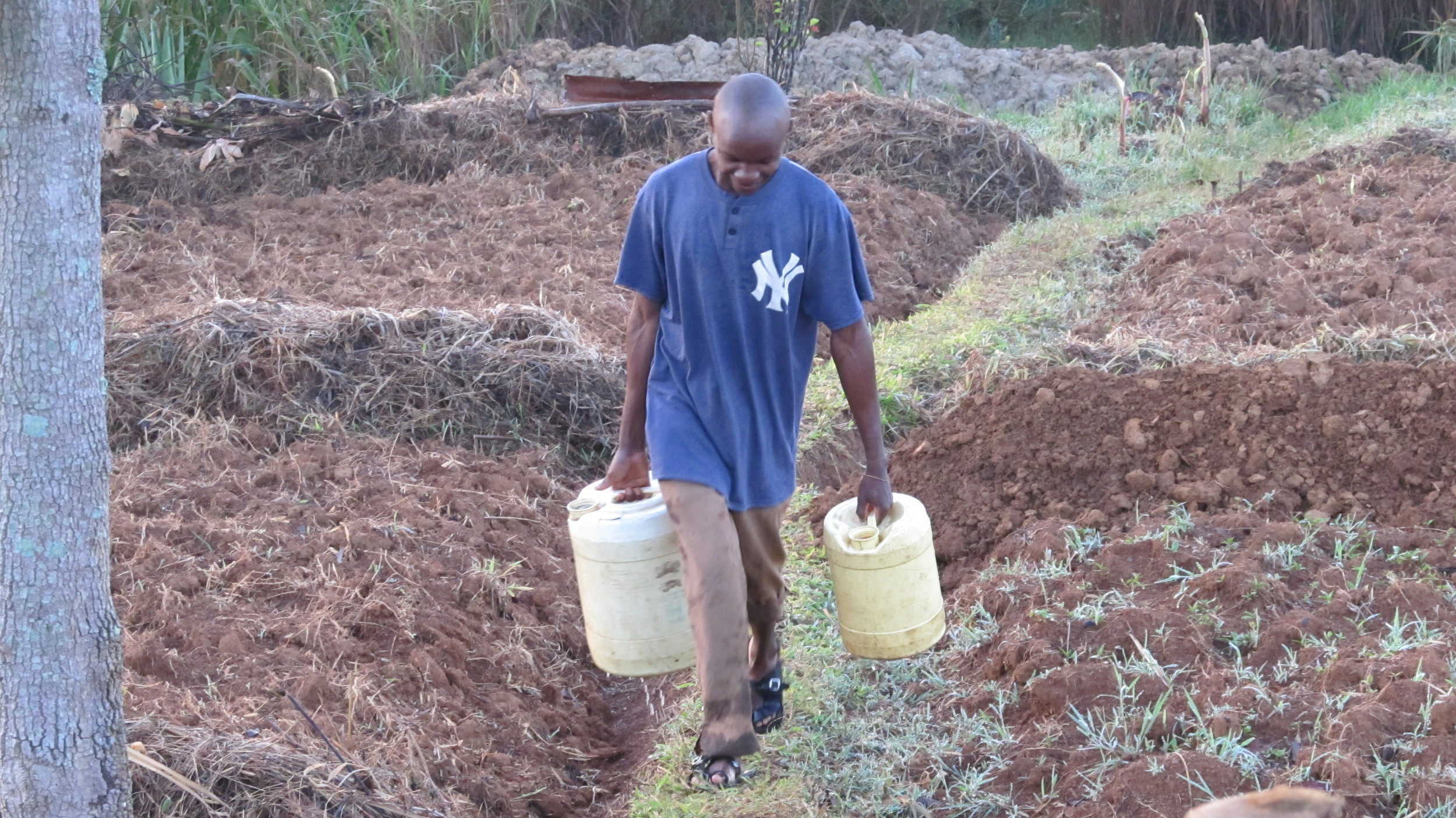 Carrying water for irrigation