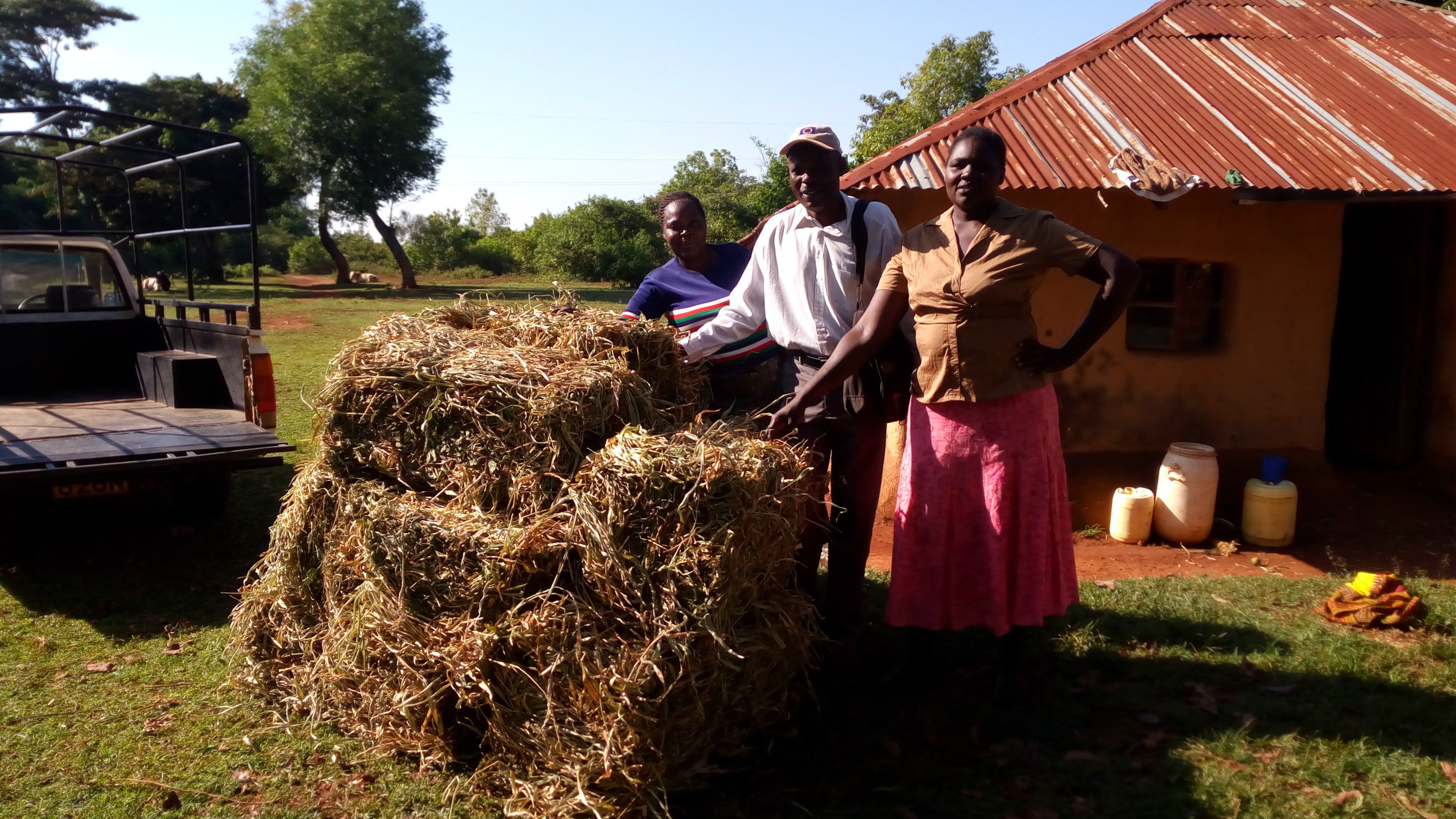 Haying is a profitable business venture.