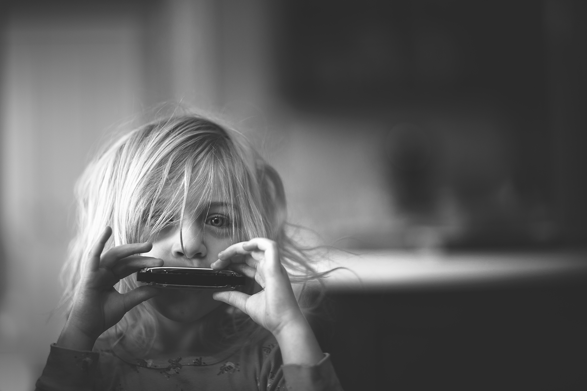 Hello-olivia-photography-long-island-family-photographer-yaphank-harmonica.png
