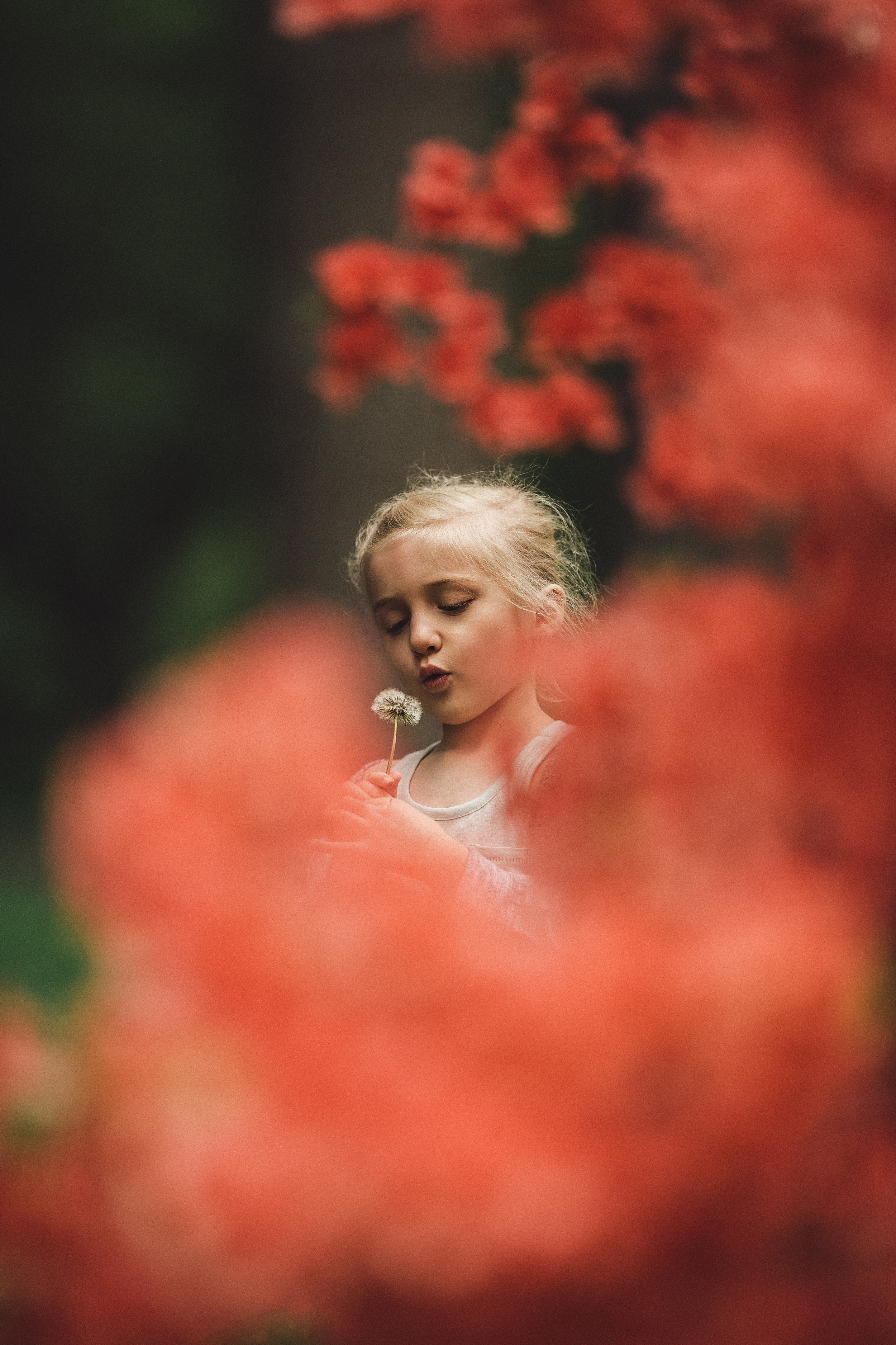 Hello-olivia-photography-long-island-family-children-childrens-lifestyle-photographer-planting-fields-oyster-bay-flowers-pink