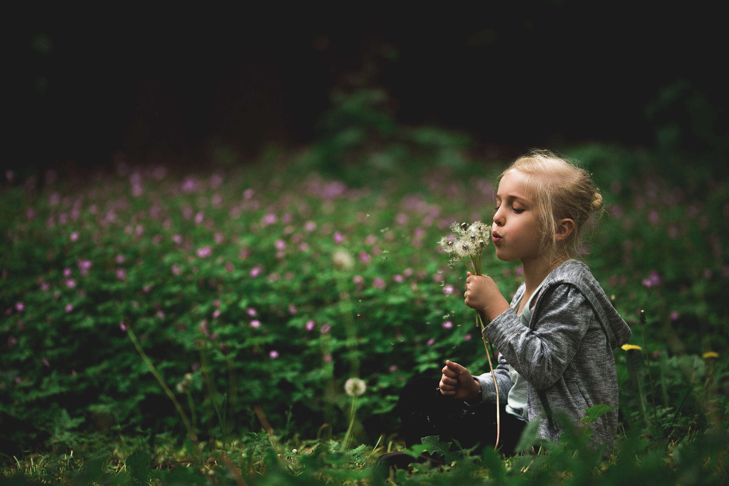 Hello-olivia-photography-long-island-family-children-childrens-lifestyle-photographer-planting-fields-oyster-bay-blowing-flowers