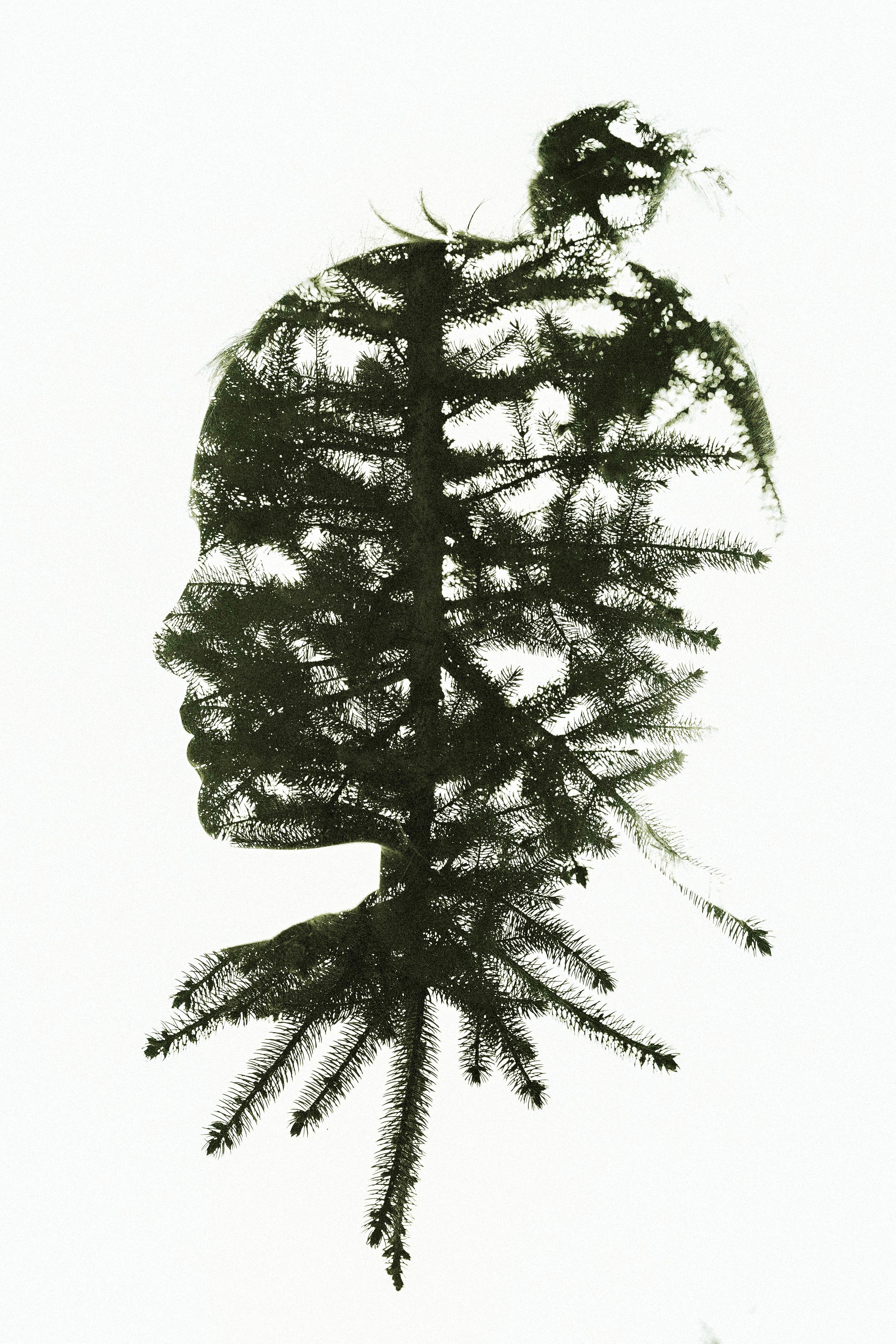Hello-olivia-photography-long-island-family-children-childrens-photographer-double-exposure-pine-tree-profile