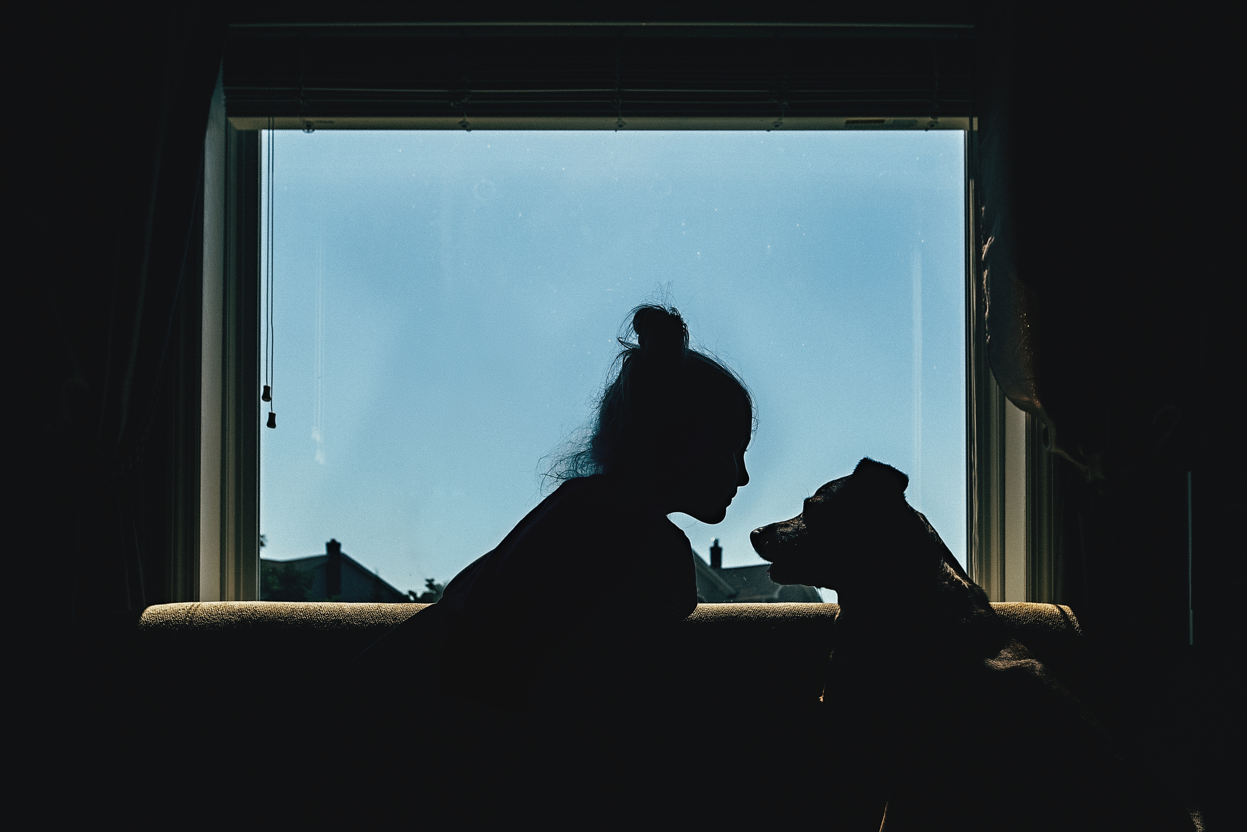 long-island-photographyer-hello-olivia-photography-a-room-with-a-view-dog-silhouette.jpg