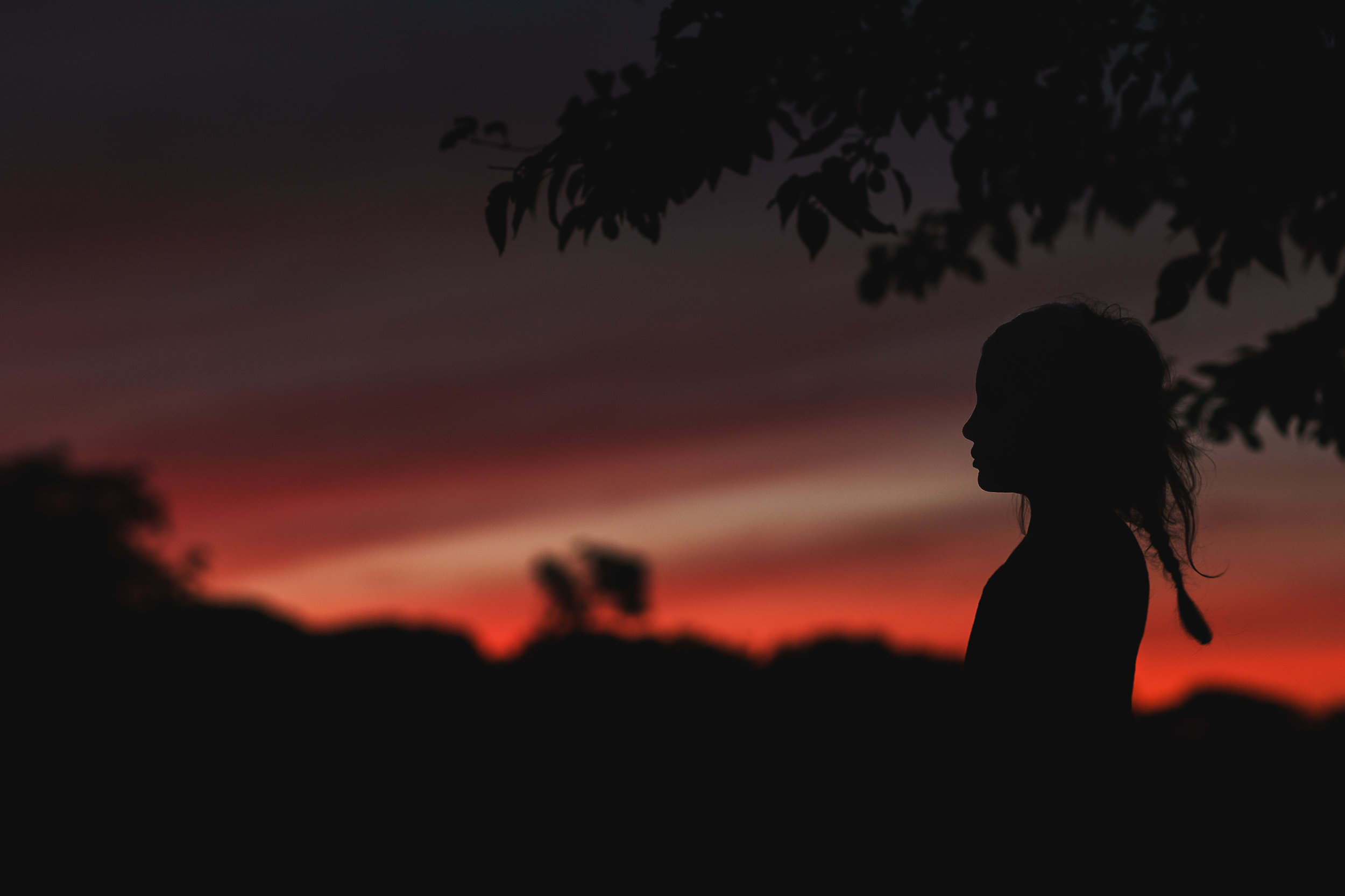 Hello-olivia-photography-Long-island-photography-children-session-family-lifestyle-silhouette-red.jpg