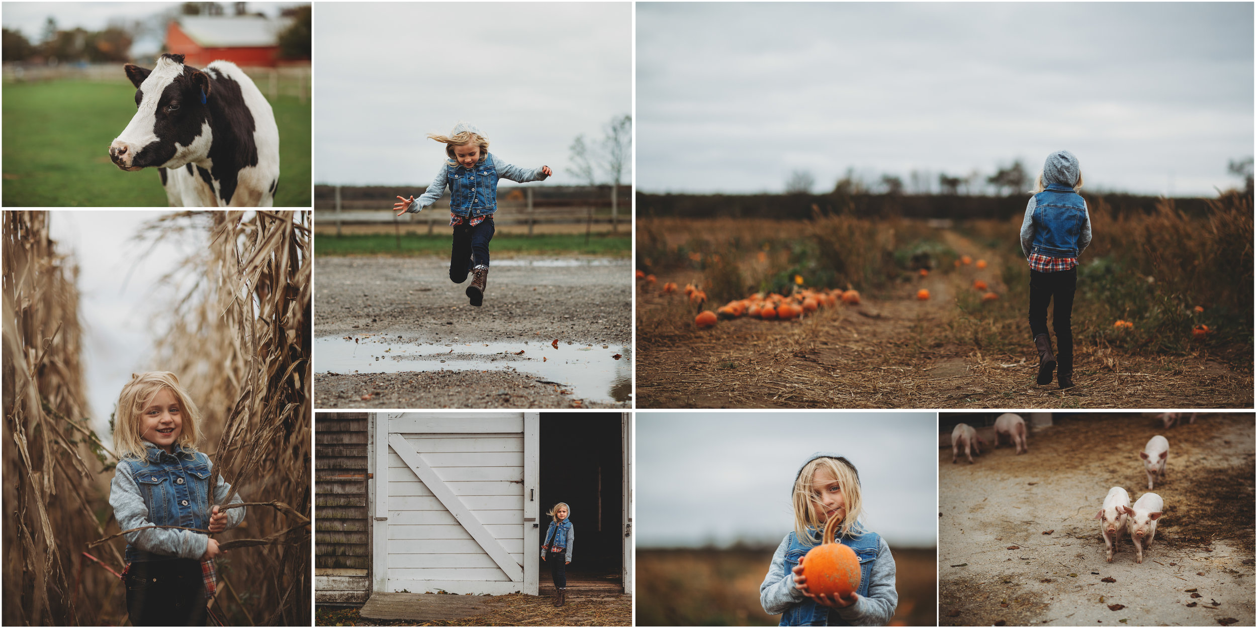 hello-olivia-photography-long-island-photographer-suffolk-county-farm
