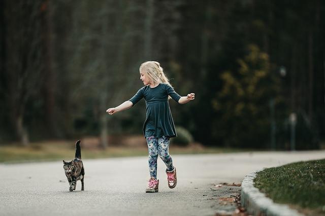 hello-olivia-photography-long-island-photographer-children-family-portraits-pets-cats-kitty6.jpg