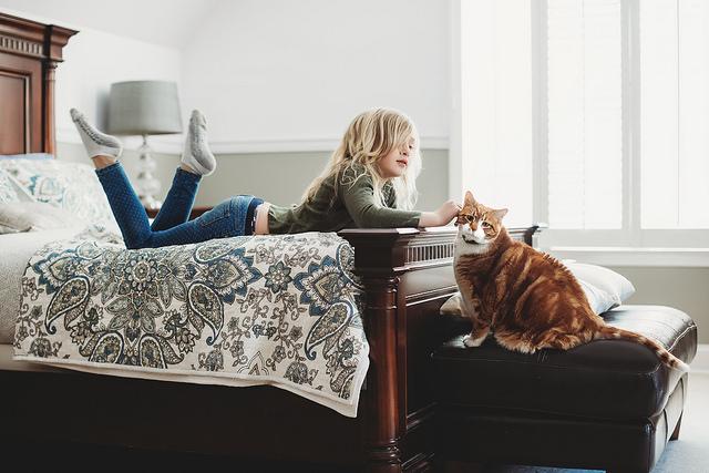 hello-olivia-photography-long-island-photographer-children-family-portraits-pets-cats-kitty2.jpg