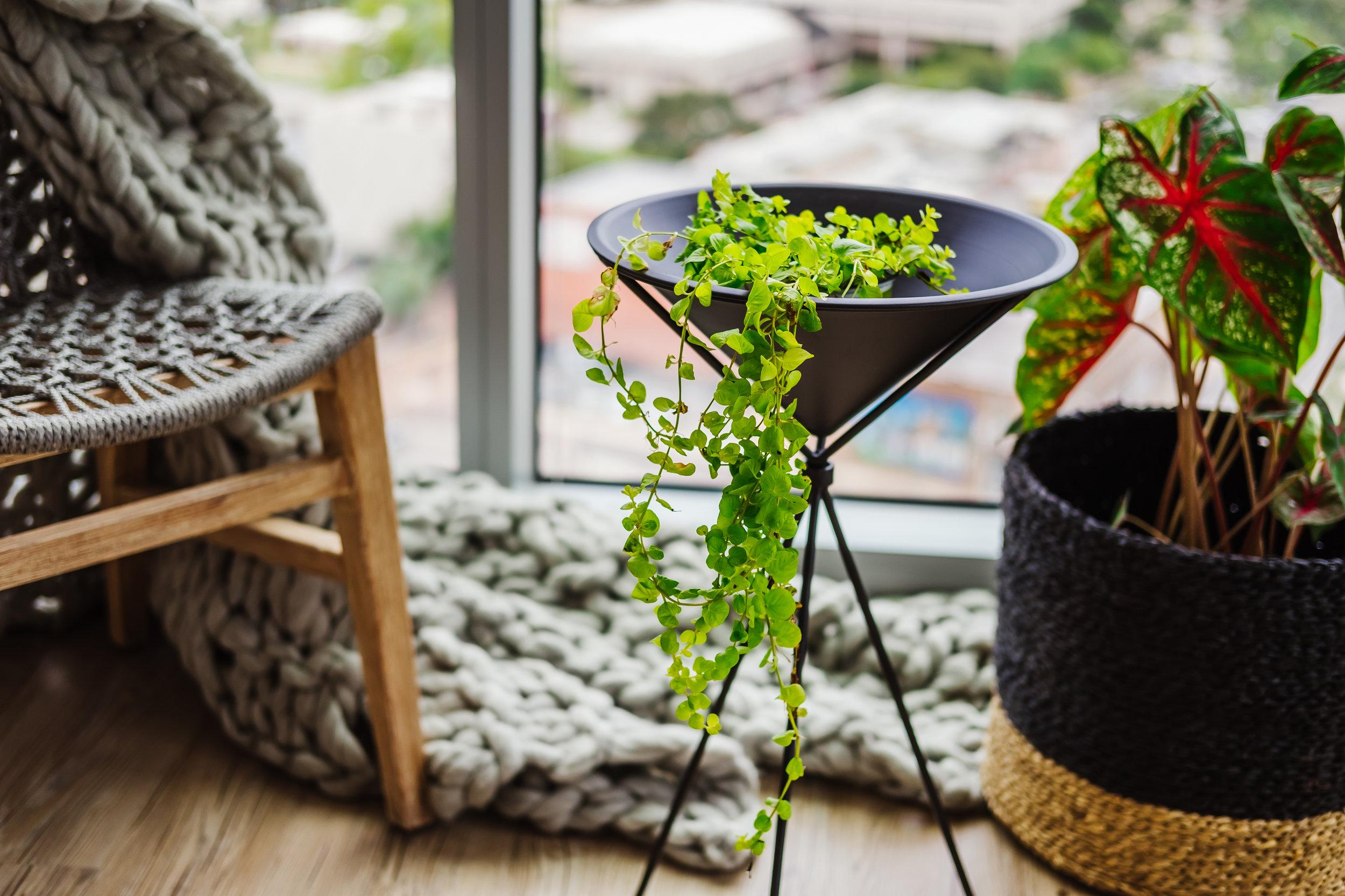 Ann Cox Design_Interior Design_ Contemporary Home Decor-4