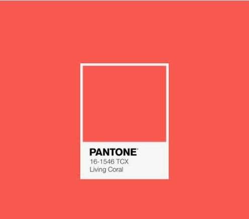 2019 Pantone Color of the Year: Living Coral, image via  Pantone