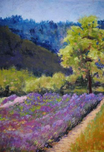 Wild-Rain-Lavender-Farm_500.jpg