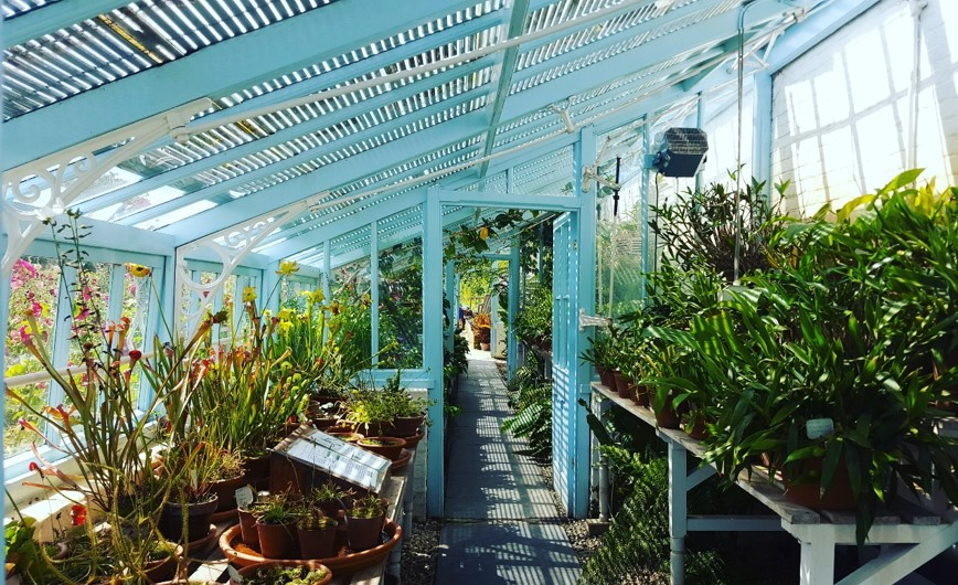 Charles Darwin's glasshouse, at his home Down House.