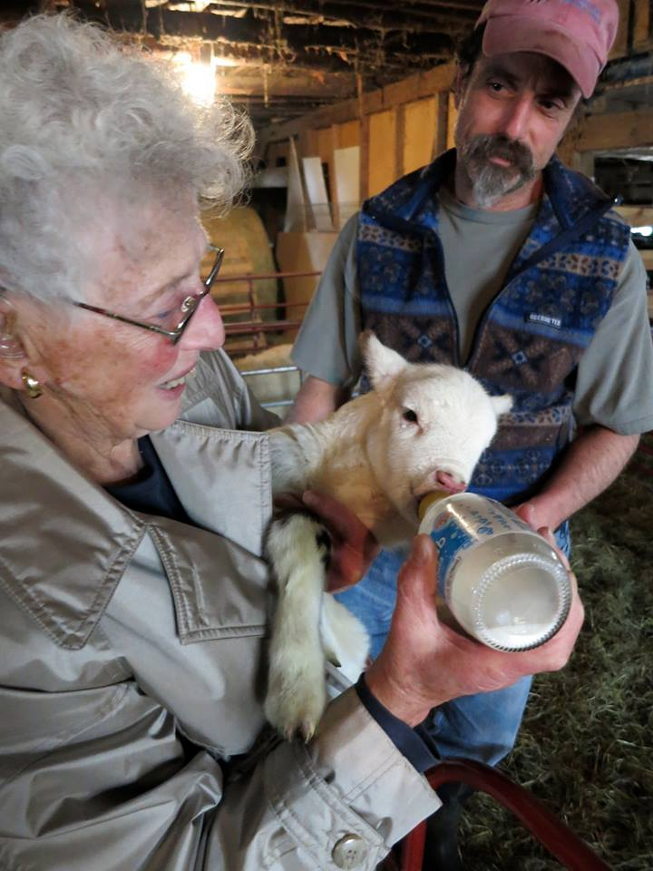 Mike and Iris - Feeding a lamb