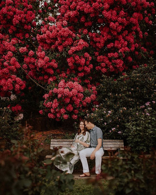 Something about spring time and new life! 🌺 . . . . . . . . . . . . #oregonmaternity #maternity #oregonmaternityphotographer #portlandmaternity #portlandmaternityphotographer #thebump #motherhood #motherhoodunplugged #mothertobe #maternityinspo #oregonfamilyphotographer #portlandfamilyphotographer #portlandnewbornphotographer #oregonnewbornphotographer
