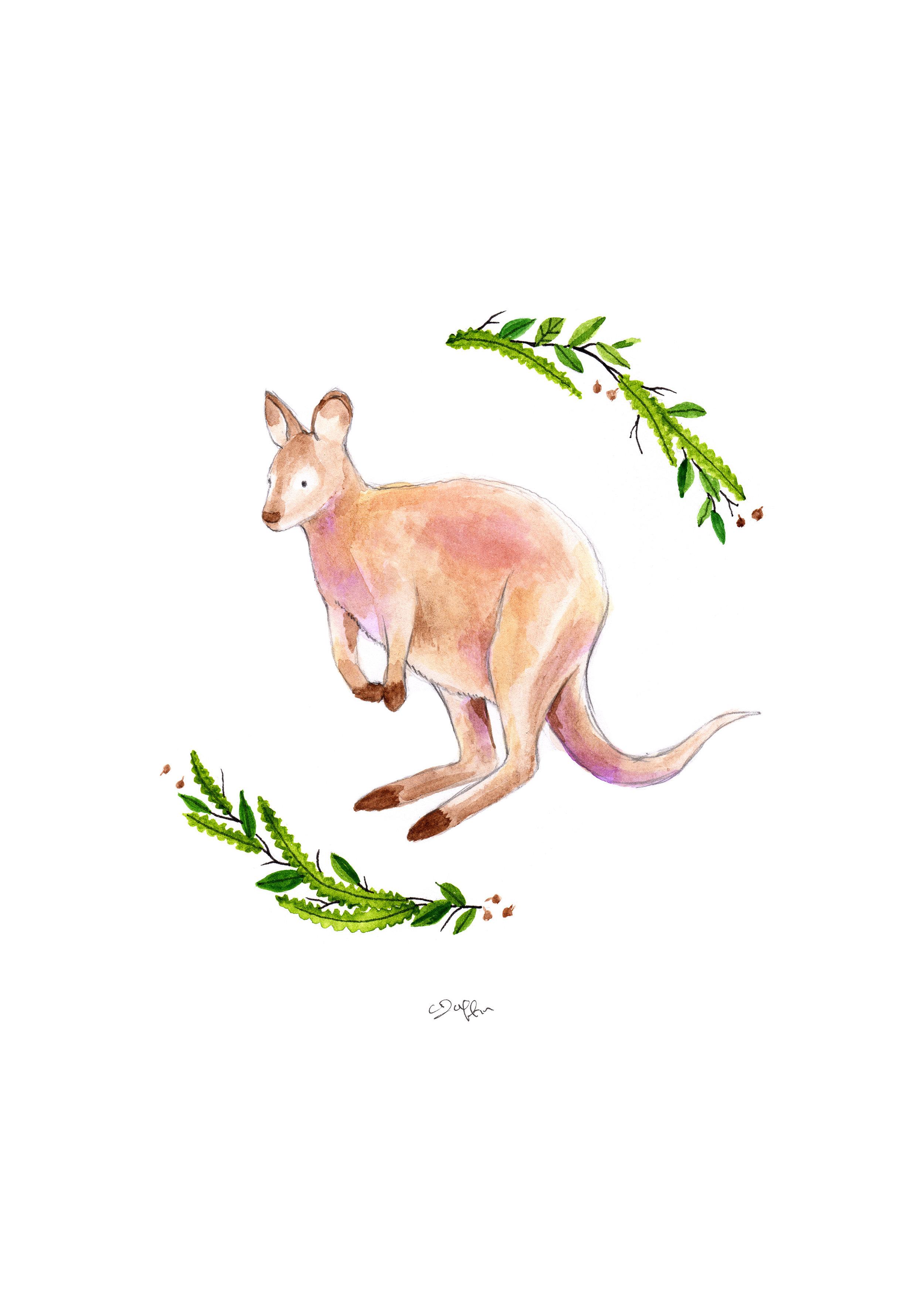 Wallaby Print.jpg