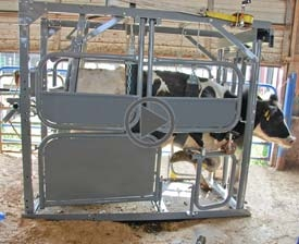 The new HVC12 Hoof Care Chute retains the advanced features of the earlier HCC2008. This chute is so well engineered that veterinarians recommend using these chutes for Hoof Trimming, Breeding, Palpation, and many other Veterinarian procedures.  Remember that a chute of this quality is not simply an expense, but an investment that pays dividends by allowing dairy farmers to be more proactive in managing the health of their cows