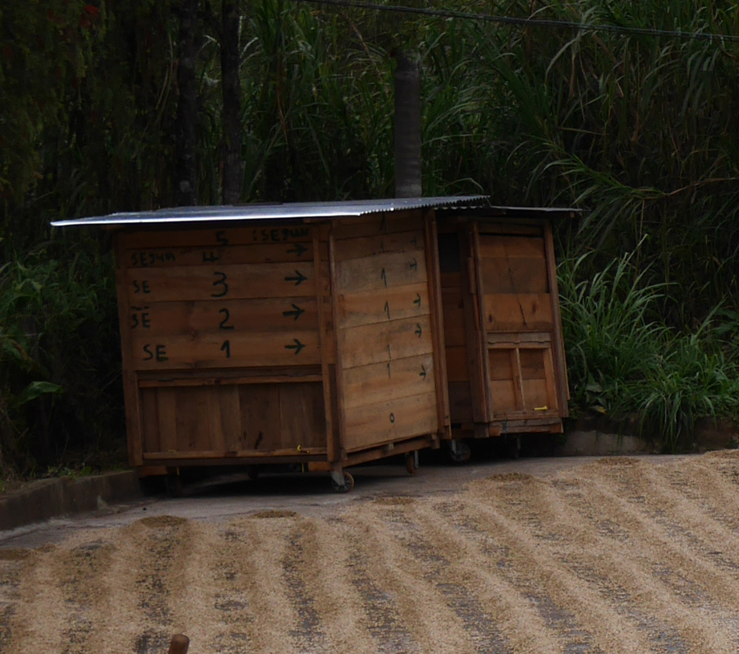Boxes used for storing drying coffee overnight.jpg