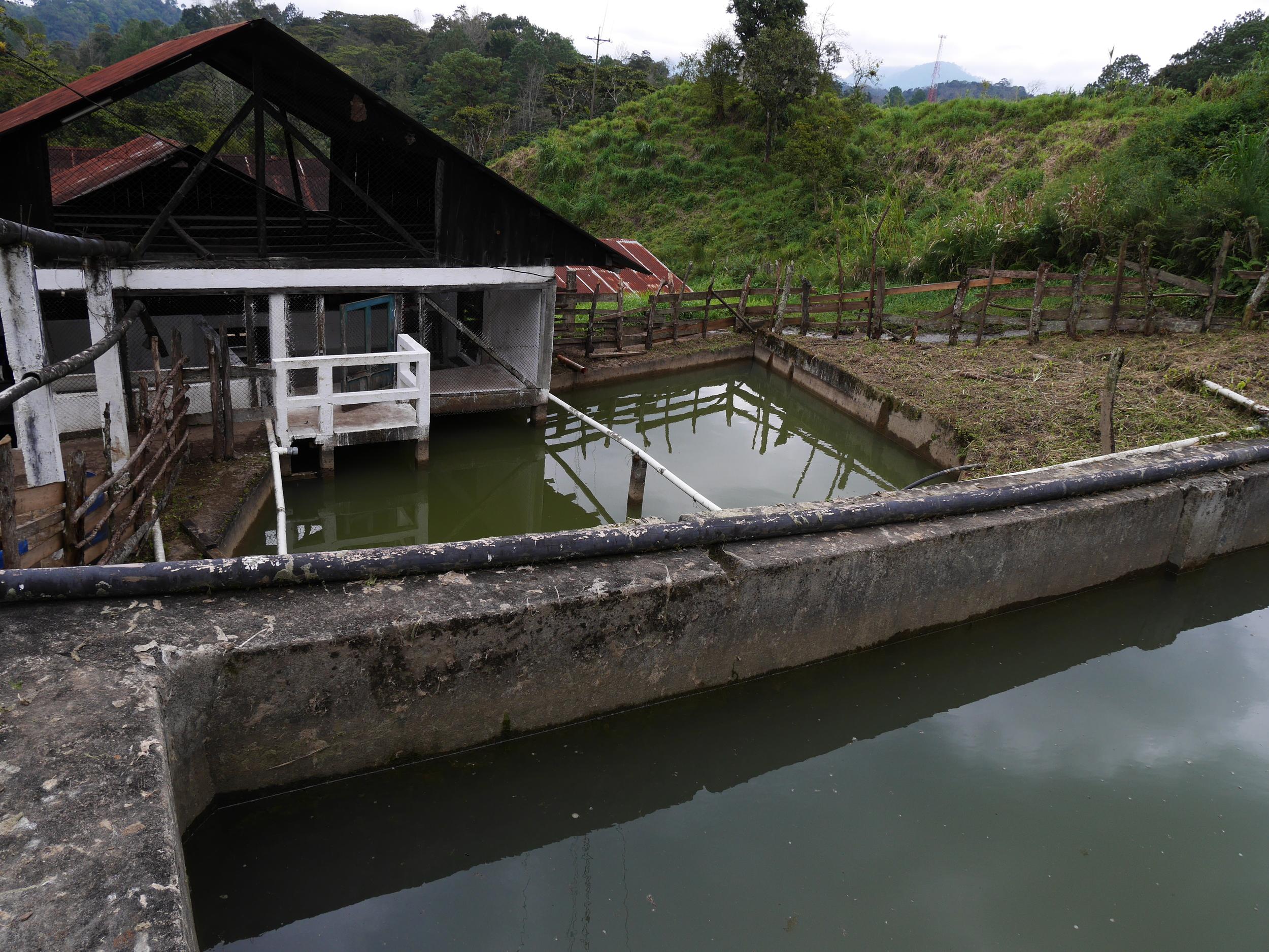 Wet Mill Santa Isabel.JPG