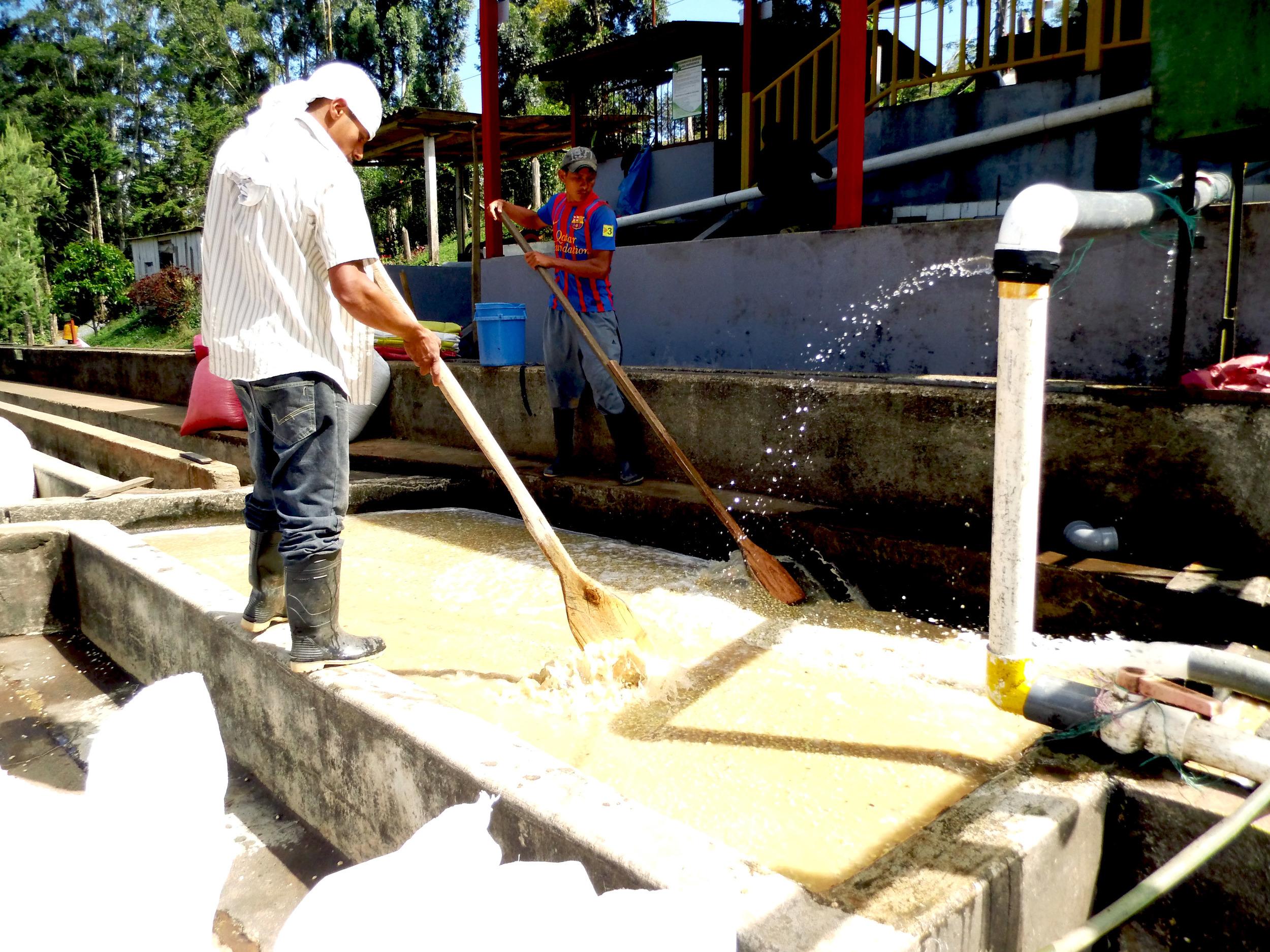 Paraiso washing 2.jpg