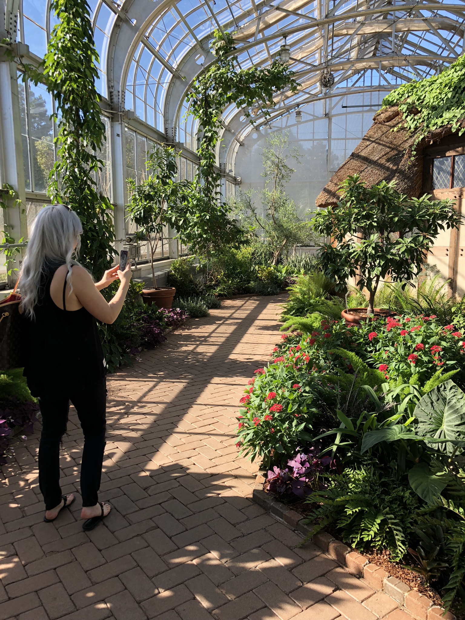 chic stripes lewis ginter botanical gardens