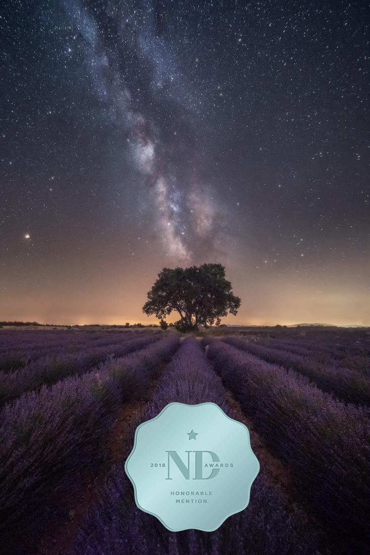 MILLION-Anthony_Uplifting-Cosmos LOGO ND.jpg