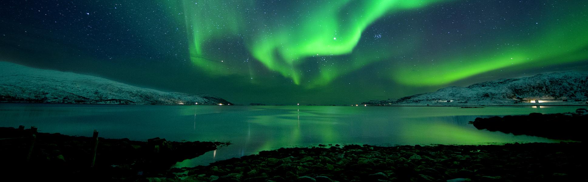 night-3_banner.jpg