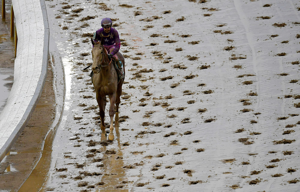 The 2017 Kentucky Oaks race at Churchill Downs on Friday. Riding Wicked Lick, Hernandez (No. 9, in the purple silk with stars) finished 13th in the Oaks.