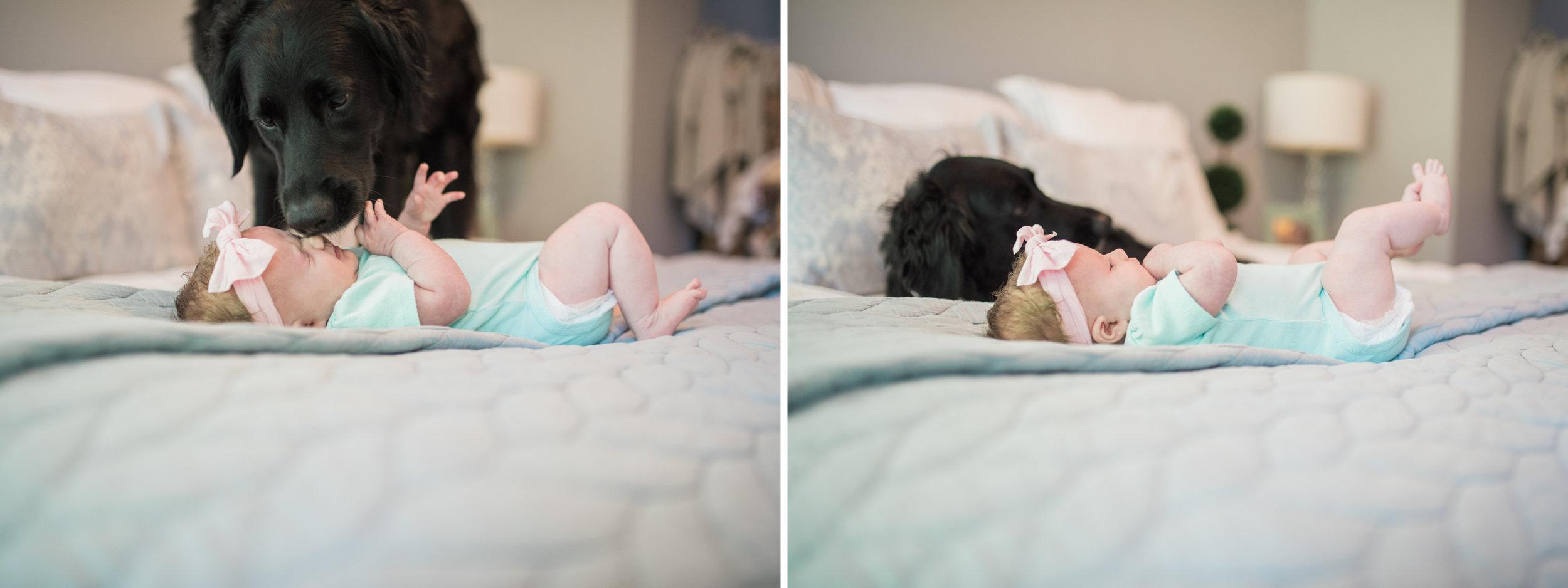harford-county-newborn-photographer-breanna-kuhlmann-1.jpg