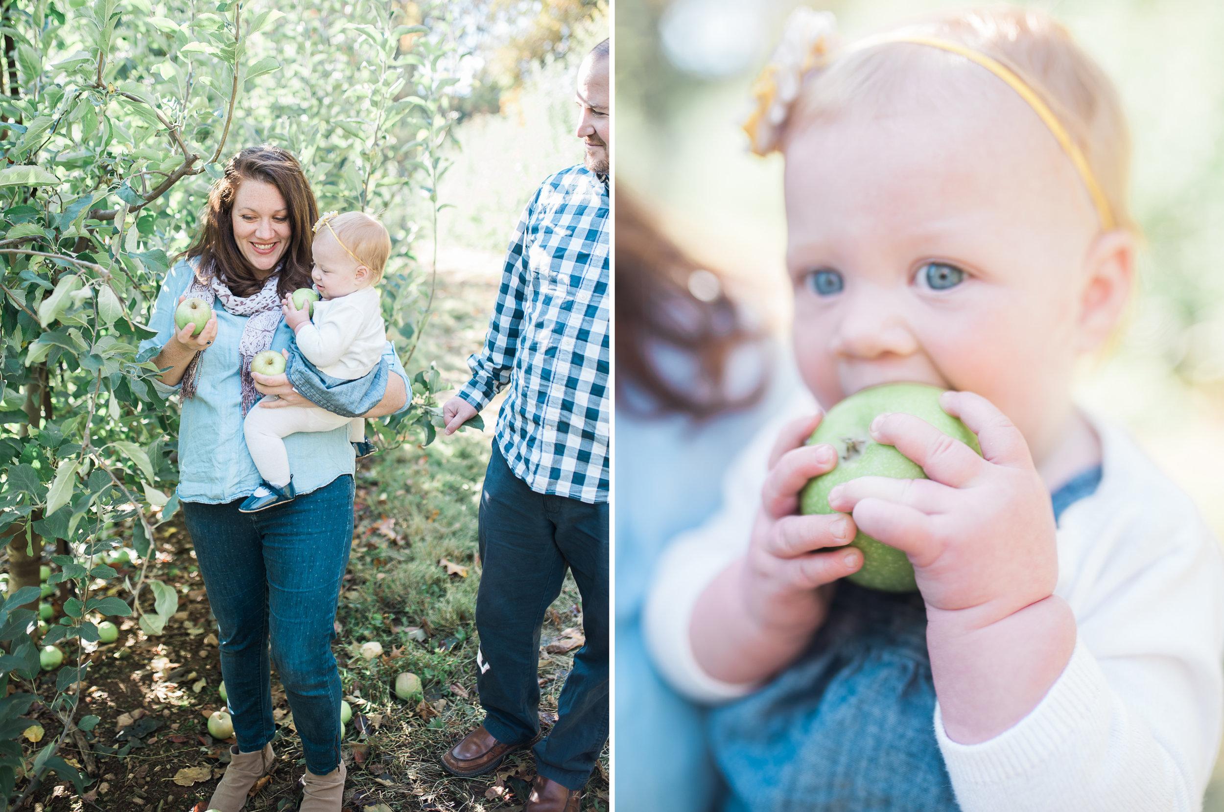 Maryland-family-photographer-lifestyle-photos-by-bklp-breanna-kuhlmann-3.jpg