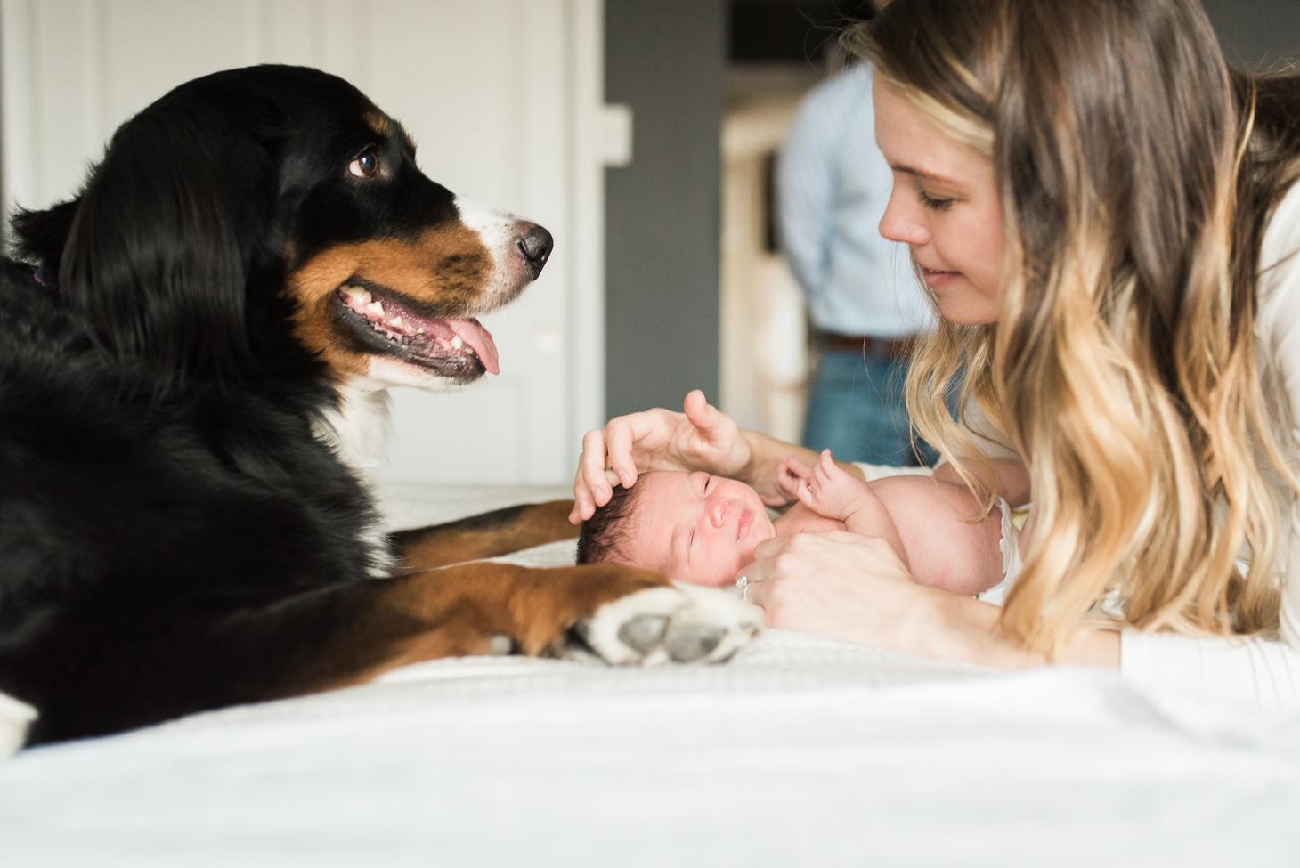 Baltimore-Maryland-Newborn-lifestyle-photographer-breanna kuhlmann-26.jpg