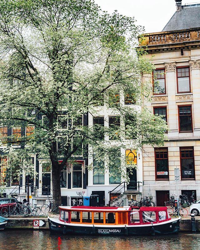 Amsterdam vibes. . . . . . #artofvisuals #createcommune #agameoftones #heatercentral #beautifuldestinations #theimaged #ig_color #way2ill #royalsnappingartists #creativetones #moody_captures #passionpassport #tonekillers #girlscreating  #busabout  #sonyalpha #europe #eurotrip #europetravel #topeuropephotos #amsterdam #iloveamsterdam #amsterdambikes #netherlands #visitamsterdam #traveler #digitalnomad #travelphotography
