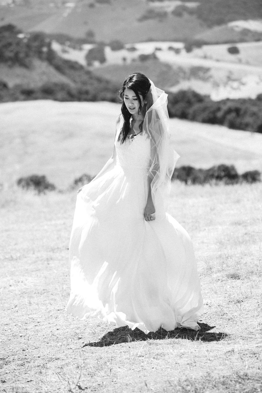 bigsurweddingphotographercarmelweddingphotographerwinerywedding8.jpg