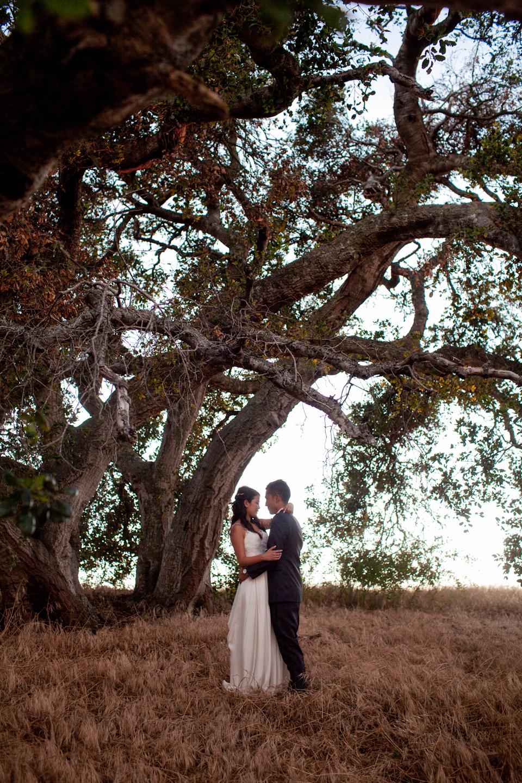 bigsurweddingphotographercarmelweddingphotographerwinerywedding47.jpg