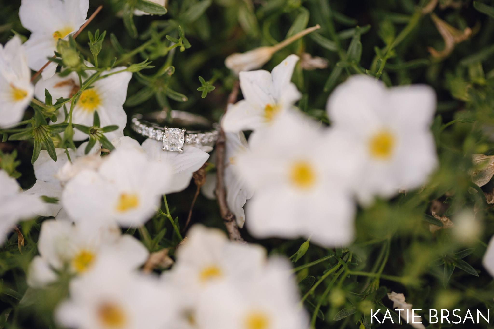 KatieBrsan-Naperville-Riverwalk-EngagementSession_0142.jpg