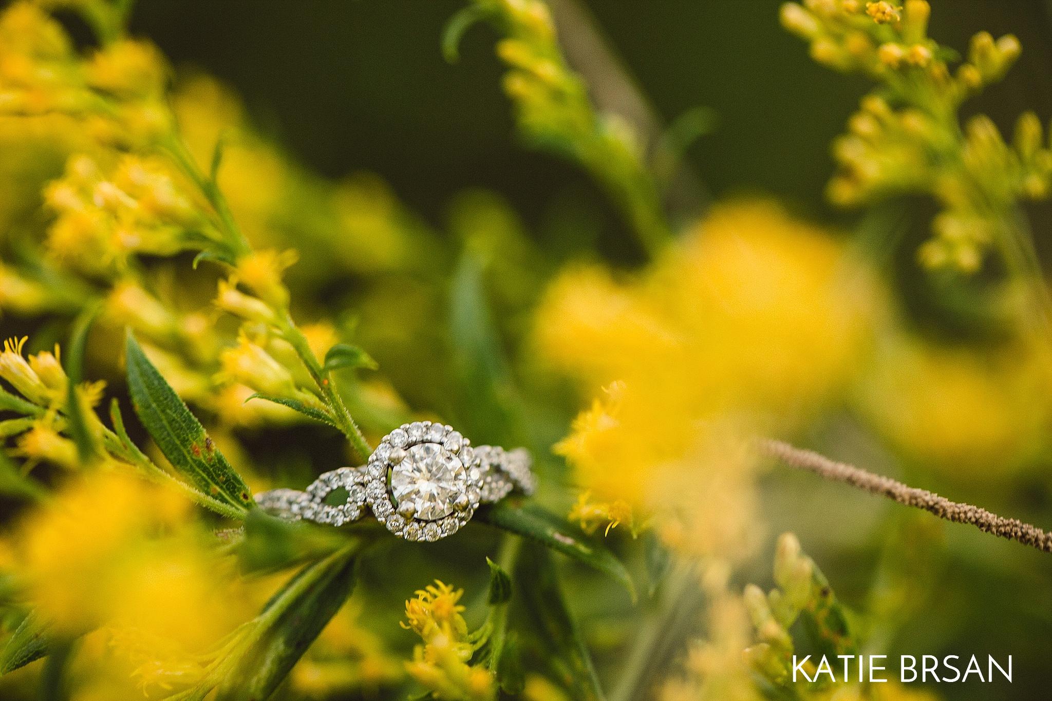 KatieBrsan-Chicago-Suburban-EngagementPictures-HadlyValley_0580.jpg