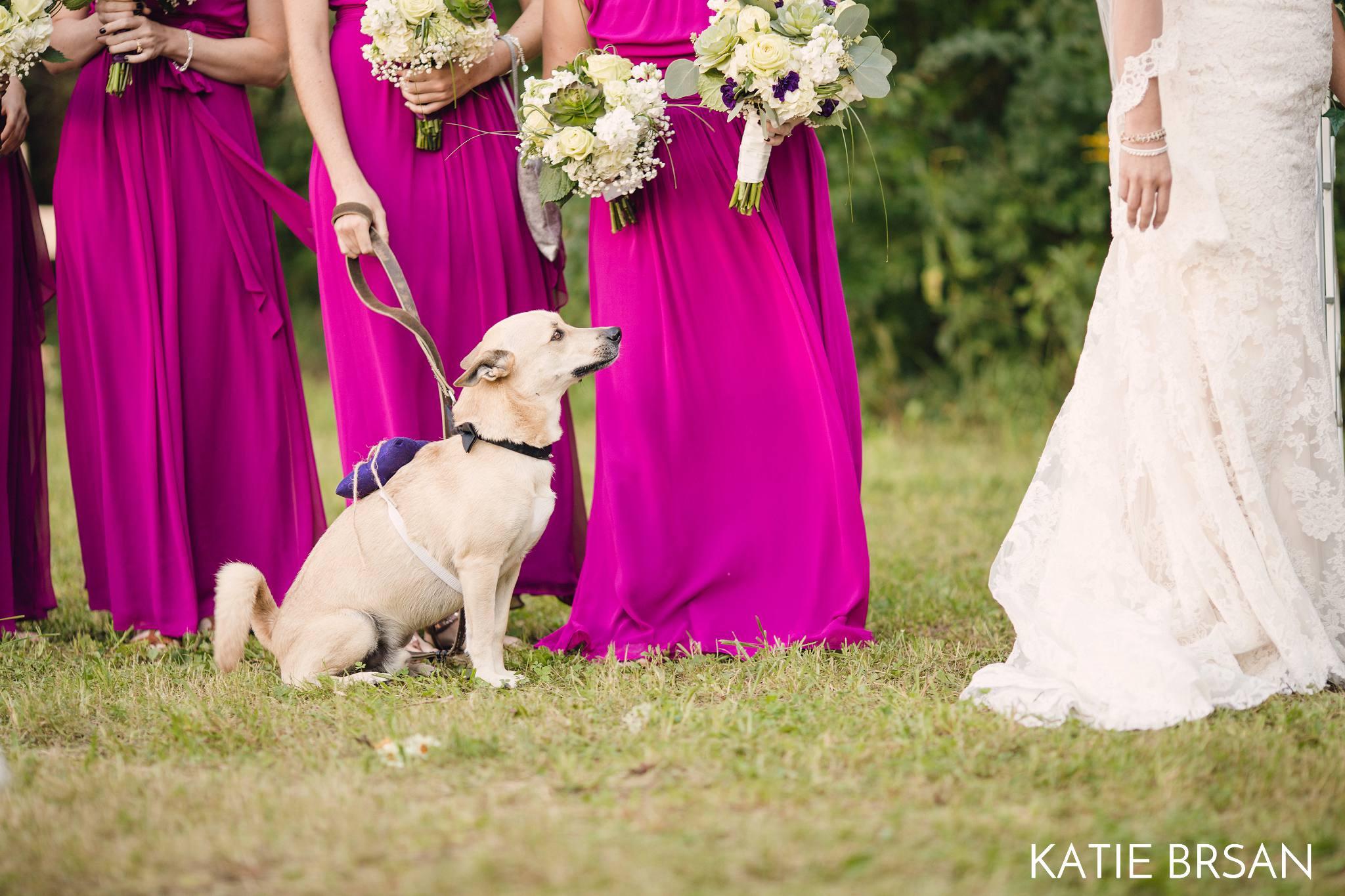 KatieBrsan-Bonfield-Backyard-Wedding_0404.jpg