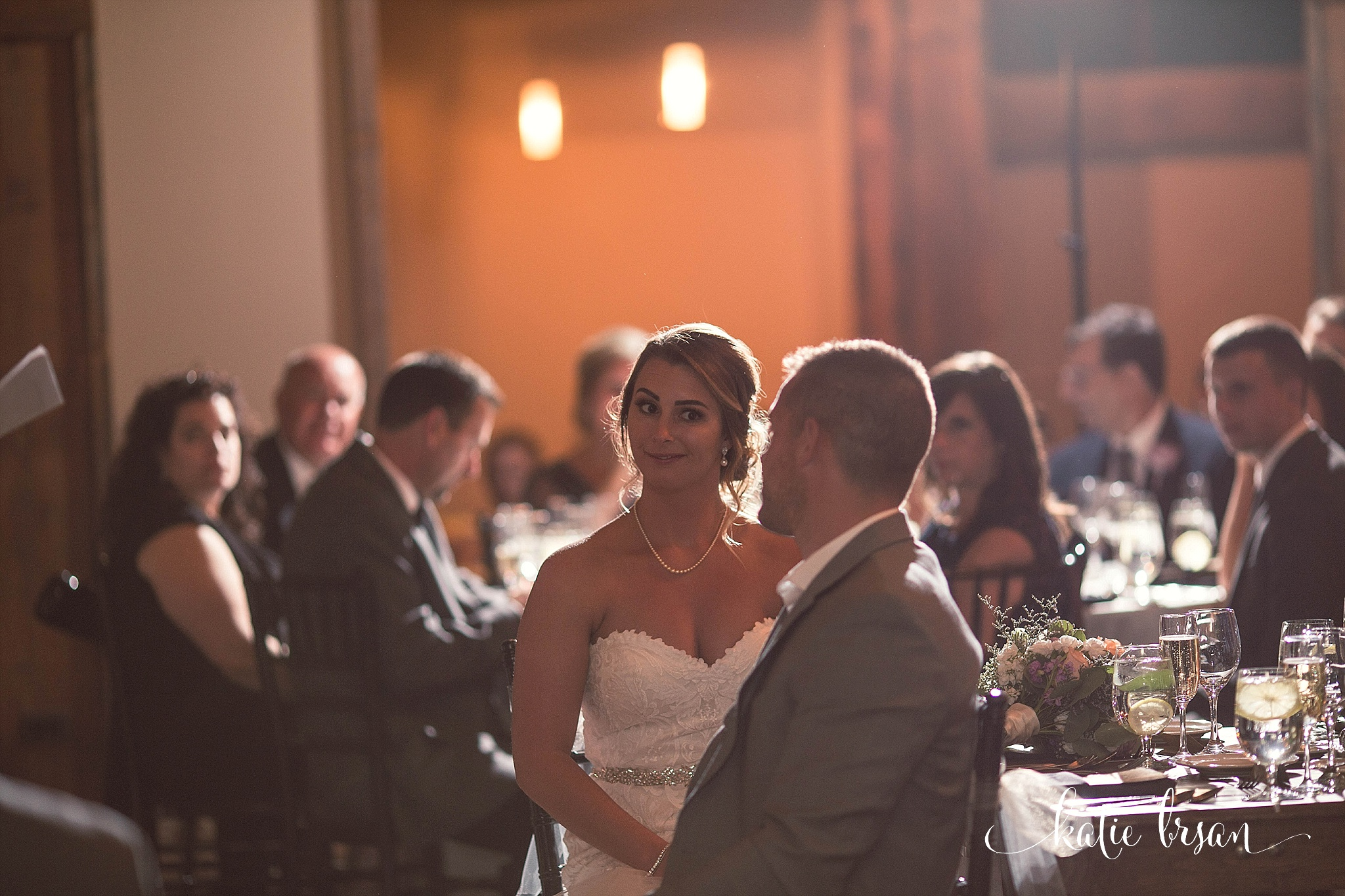 Fishermen'sInn_Wedding_Elburn_Chicago_Wedding_Photographer_1139.jpg