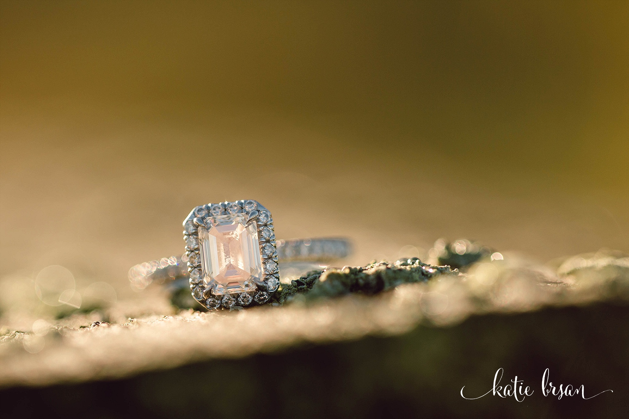Mokena_EngagementSession_ChicagoWeddingPhotographer_1193.jpg