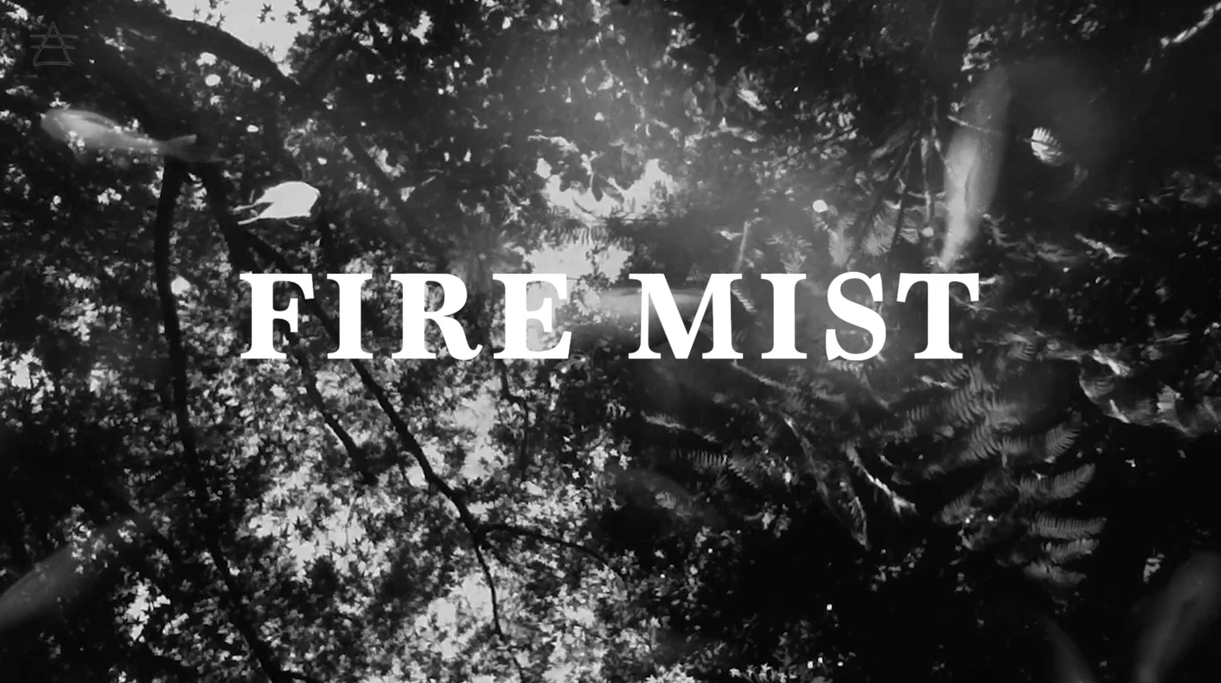 fire mist - tell me your secrets music gypsypop lyric video still1.png