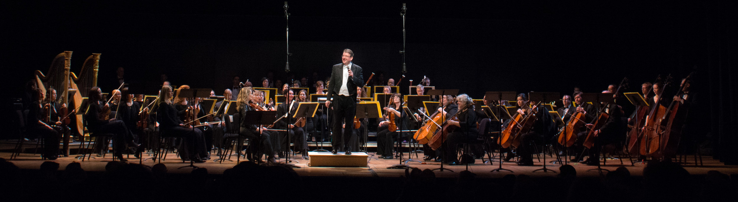 Conductor Antony Walker and the Washington Concert Opera Orchestra. Photo by Don Lassell; courtesy of Washington Concert Opera.