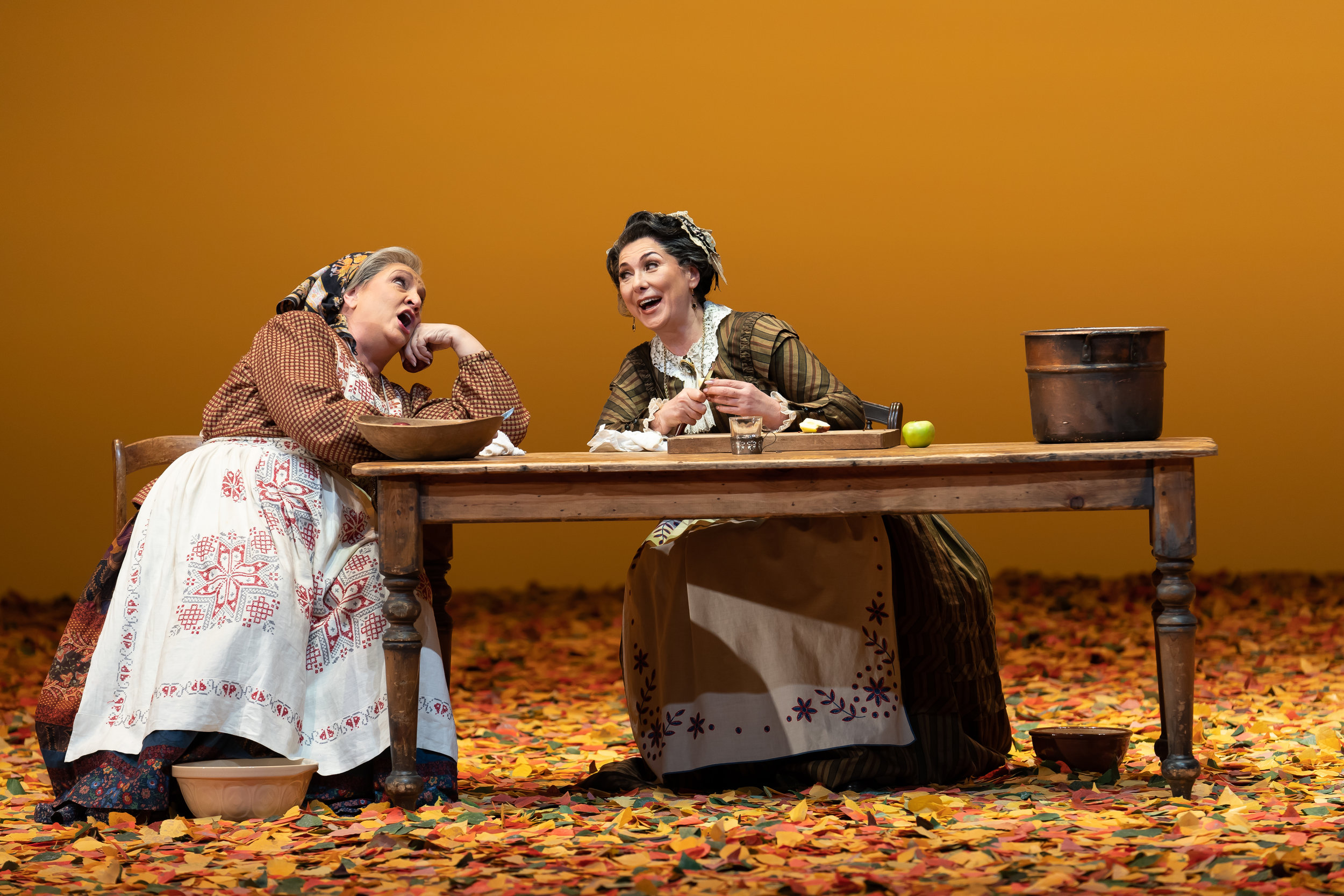Filippyevna (Victoria Livengood) and Madame Larina (Elena Zaremba) share memories of their youth in WNO's production of Eugene Onegin_credit Scott Suchman.JPG