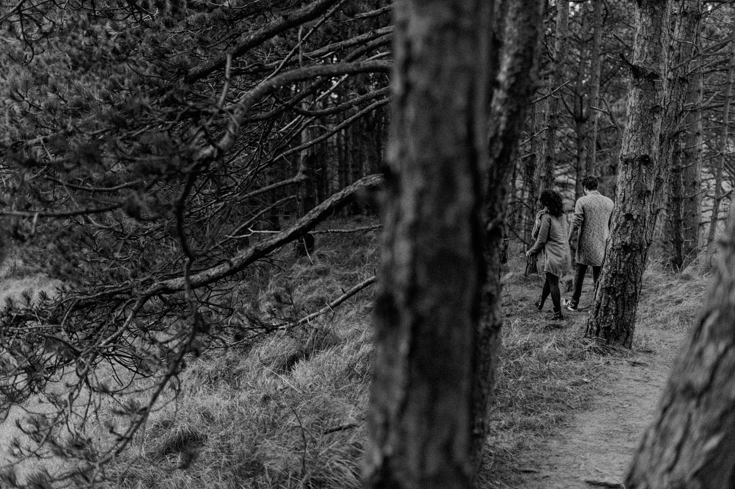Couple walking through the forrest