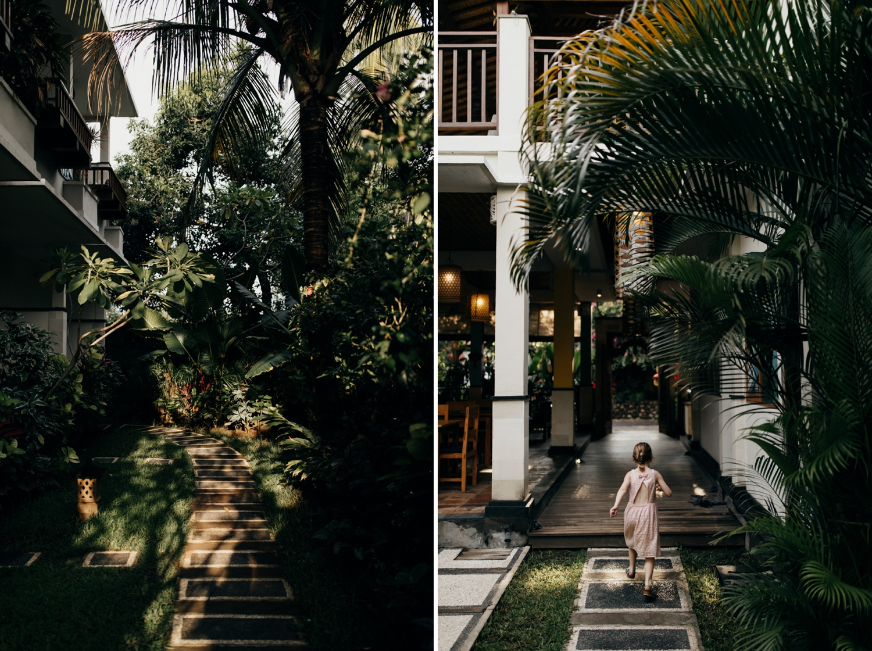 Urban jungle in Bali, Indonesia