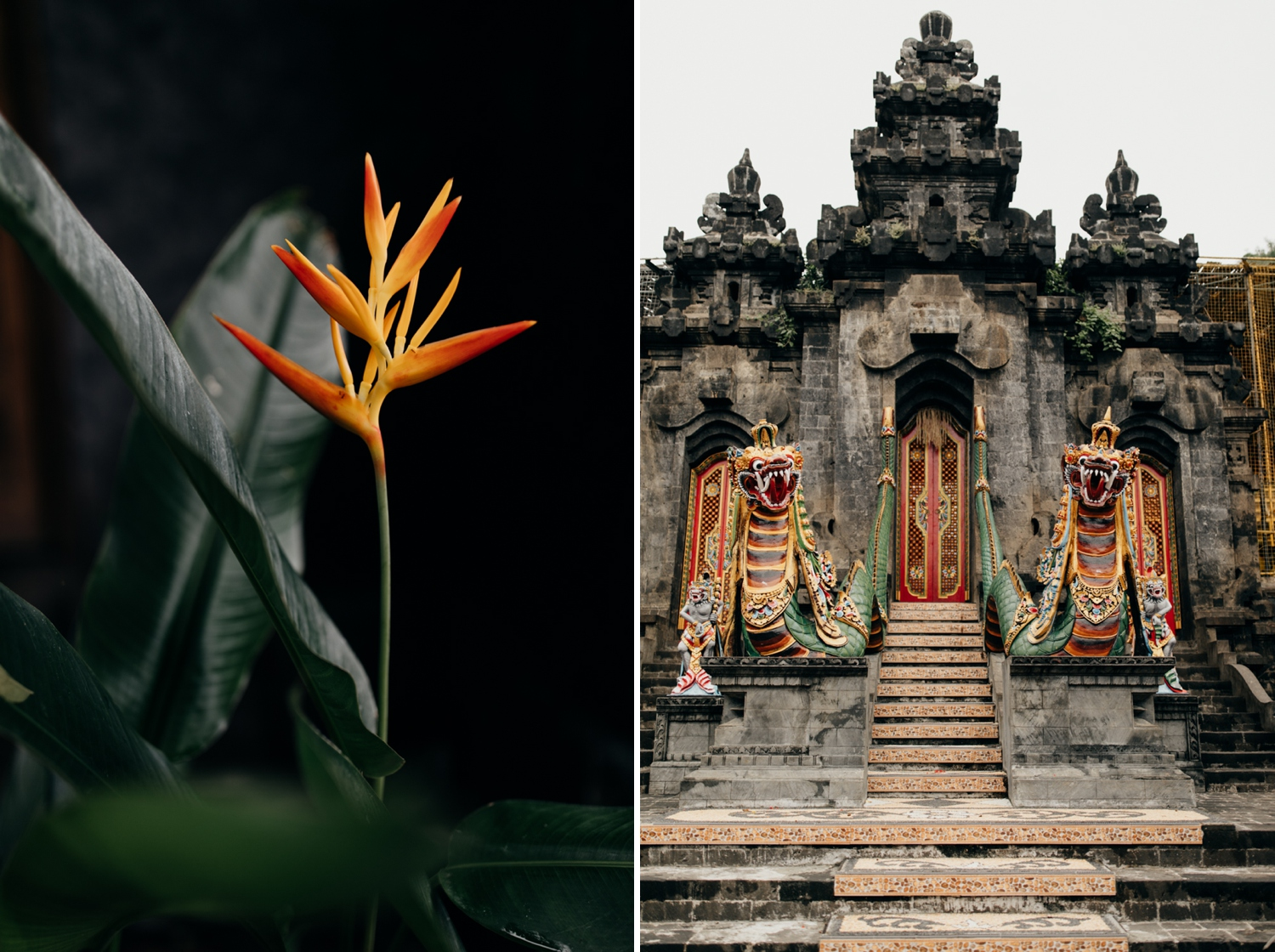 Temple and flower in Bali, Indonesia