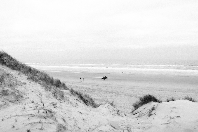 Dunes and beach of Bloemendaal