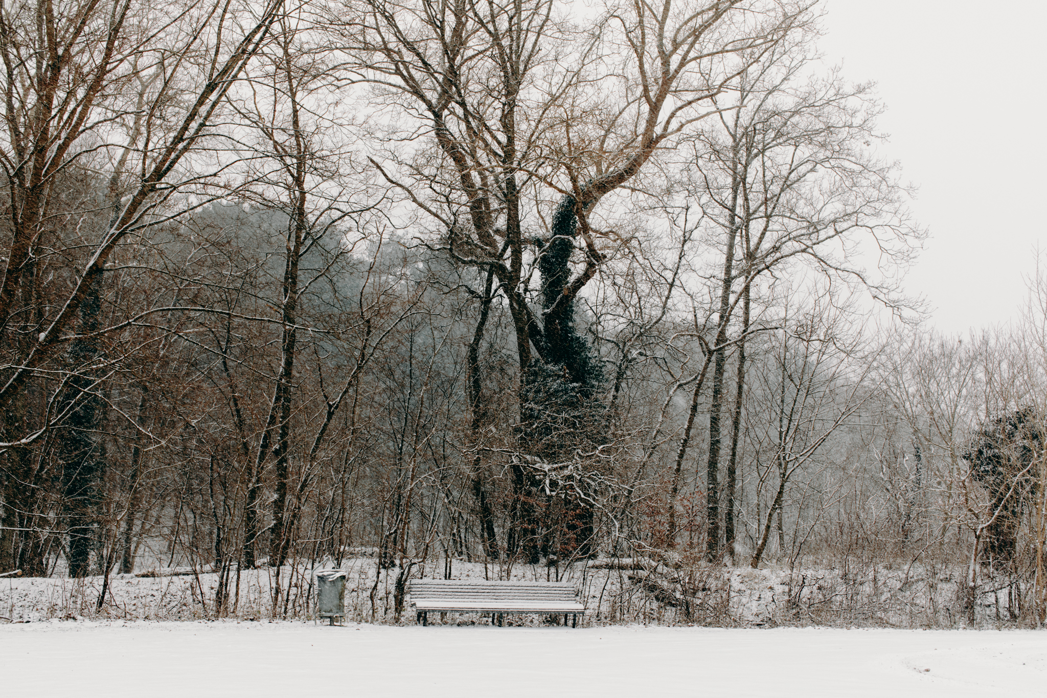 006-winter-sneeuw-oosterplas-bloemendaal.jpg