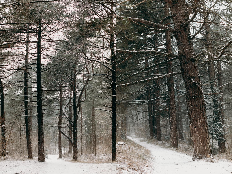 sjoerd-booij-photography-personal-winter-snow-oosterplas-bloemendaal_0006.jpg